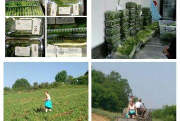 Iskustva drugih: Organski proizvodi u Severnoj Makedoniji imaju svoje kupce