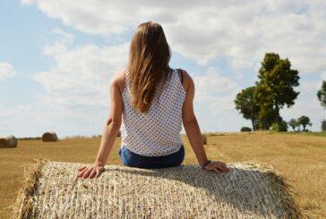Da li poljoprivreda Srbije sve više liči na poljoprivredu hobista?