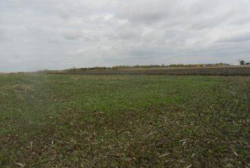 Uputstvo o postupanju prilikom sprovođenja postupka davanja u zakup i na korišćenje poljoprivrednog zemljišta u državnoj svojini
