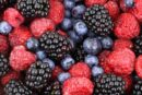 Kompanija Agro Milovanović iz Ivanjice gradi hladnjaču kapaciteta 1.000 tona zamrznutog voća