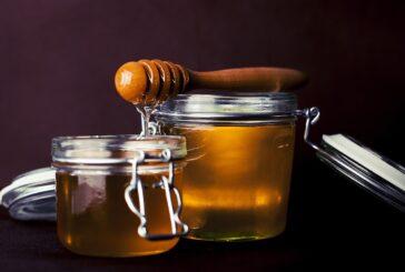 Med i proizvodi od meda velika izvozna šansa Srbije