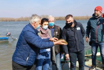 """JVP """"Vode Vojvodine"""": Odlučna borba protiv ribokradica"""
