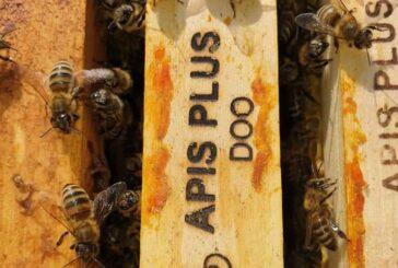 Reaktiviran rad grupacije privrednika u pčelarstvu
