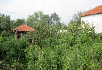 Predlog programa za dodelu praznih kuća mladim poljoprivrednicima