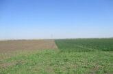 U Vršcu ponuđeno u zakup 3209 hektara državnog poljoprivrednog zemljišta u drugom krugu