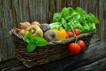 Plan za razvoj organske proizvodnje u Srbiji do 2026. godine