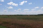 Za devet hektara u Bačkoj, stan od 100 hiljada evra u Novom Sadu