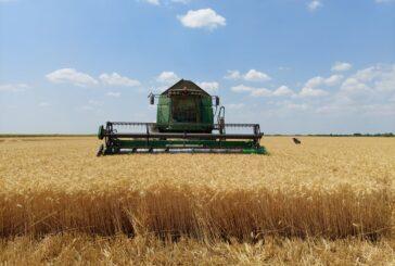 """Sa """"Žetvenog dana"""" poslata poruka nadležnima: Zaštiti proizvođače pšenice"""