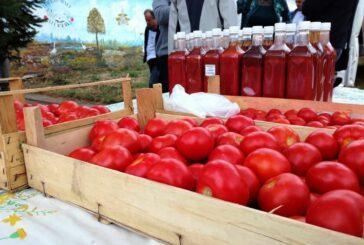 Banatski povrtari sve više prerađuju paradajz