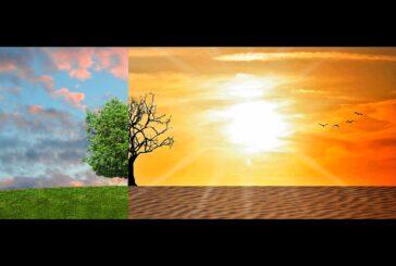 Promene klime sve više muka zadaju voćarima