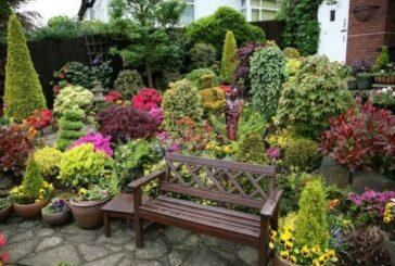 Vrt traži punu pažnju u julu – ne dozvolite da vaše biljke budu žedne