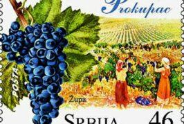 Slavi se dan prokupca, vodeće autohtone sorte grožđa